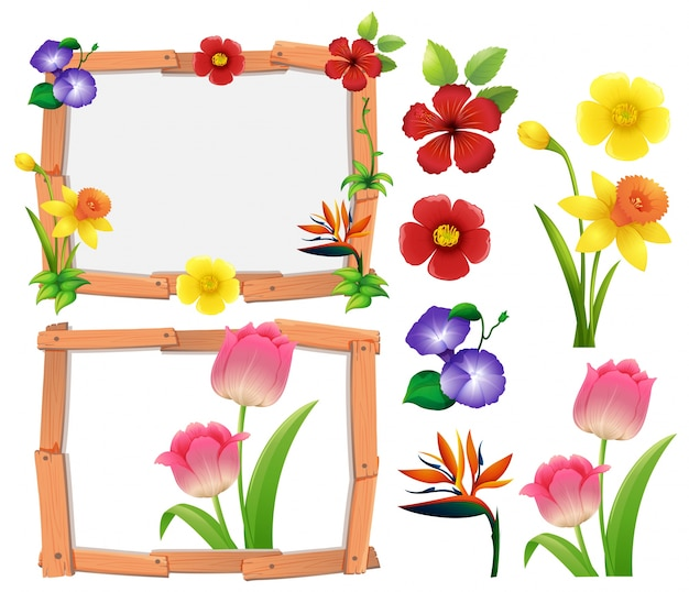 Frame Template With Different Types Of Flowers Vector Free Download
