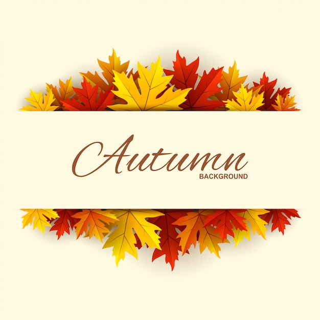 Frame with autumn leaves background Premium Vector
