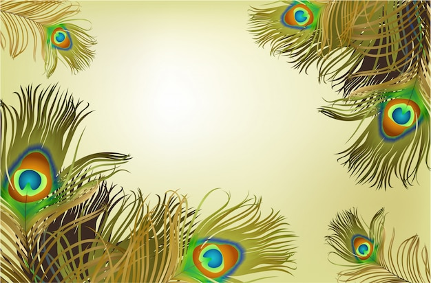 Frame with peacock feathers background Free Vector