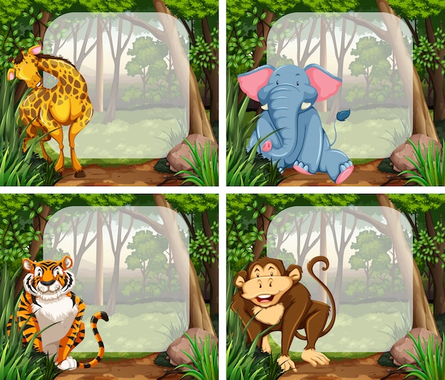 Frame with wild animals in jungle Free Vector