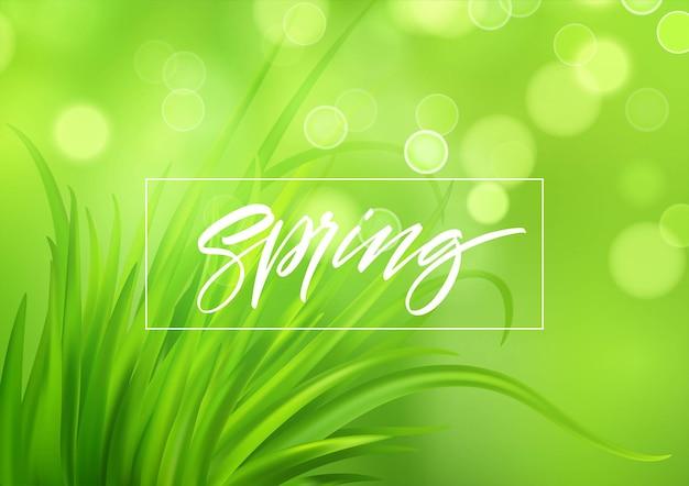 手書きのレタリングとフラッシュ春緑の草の背景。図 Premiumベクター