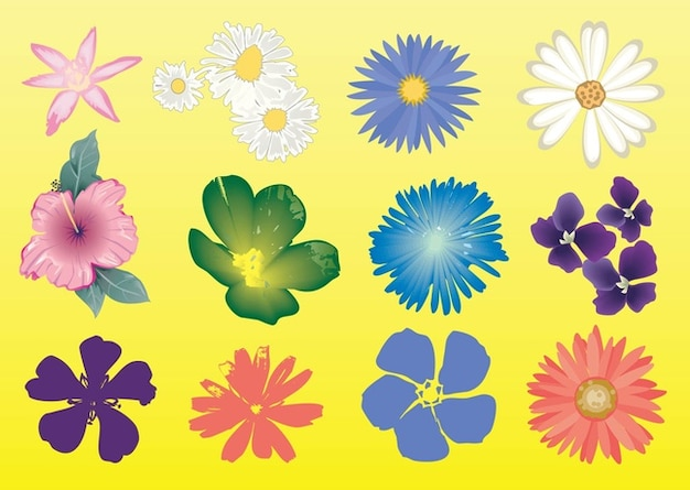 Free Flowers Vector Graphics