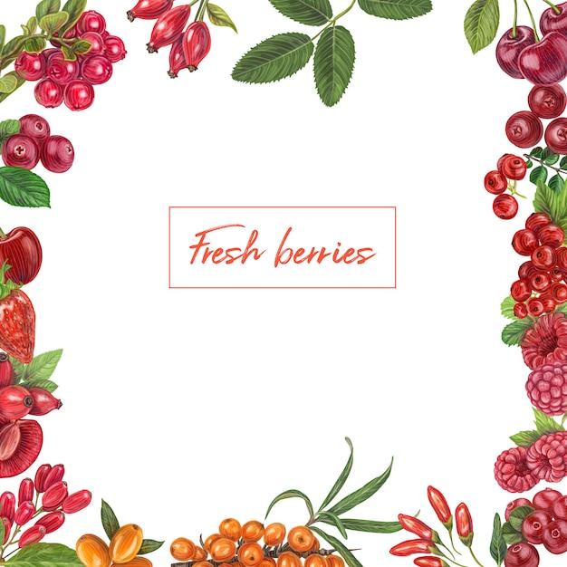 新鮮な果実手描き Premiumベクター