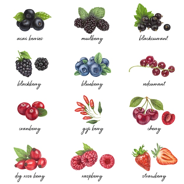 Fresh berries: healthy foods for weight loss