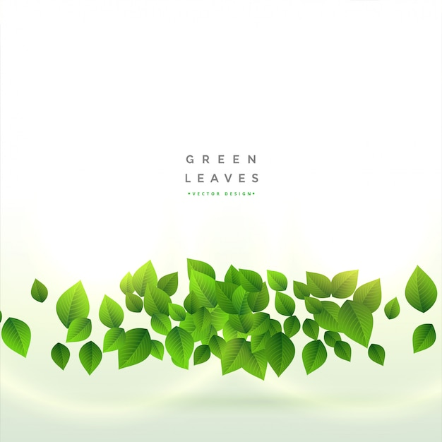 Fresh green leaves background design Free Vector