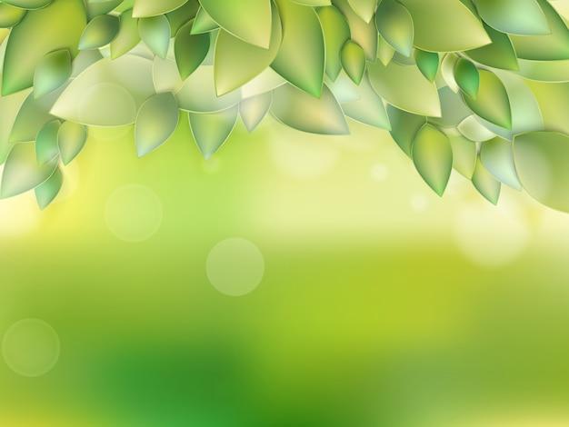 新鮮な緑の葉。 Premiumベクター