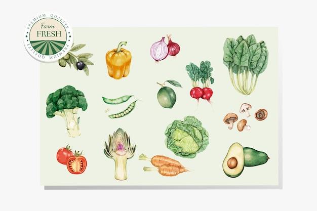 Fresh healthy vegetables vector Free Vector