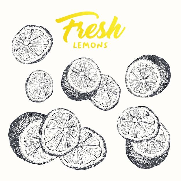 Fresh lemons banner design Free Vector