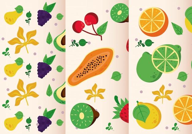 Набор свежих местных фруктов бесшовные модели Premium векторы