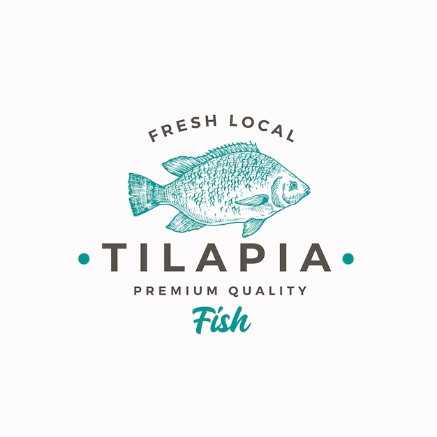 Fresh local tilapia Free Vector