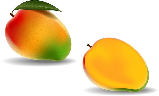 Fresh mango isolated on white background Premium Vector