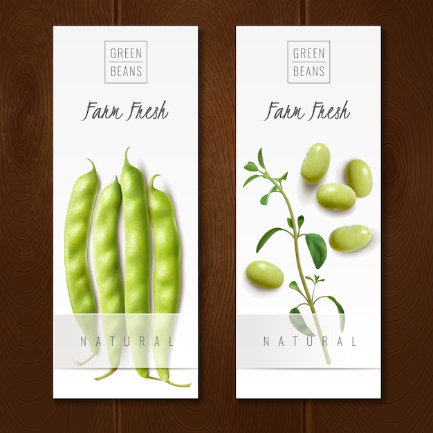 Fresh organic green beans pods healthy choice farm market offer realistic vertical banners isolated vector illustration Free Vector