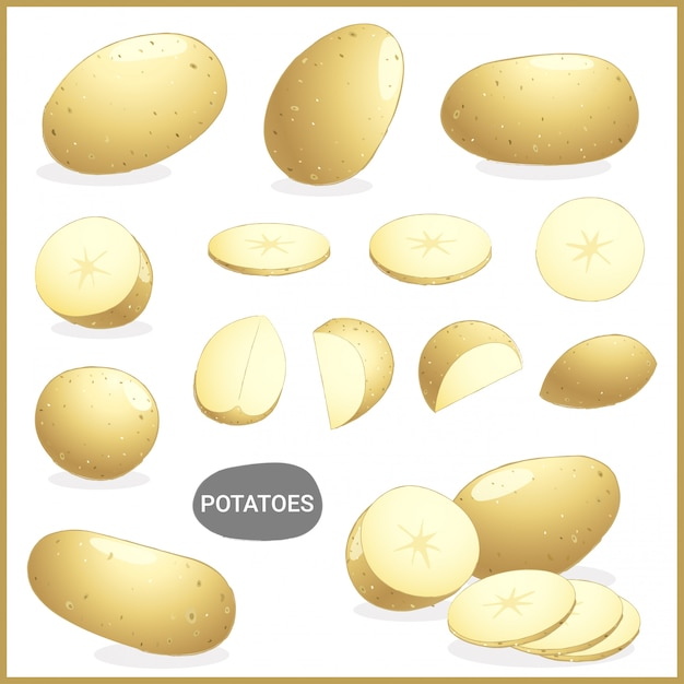 Fresh potatoes vegetable with various cuts and styles Premium Vector