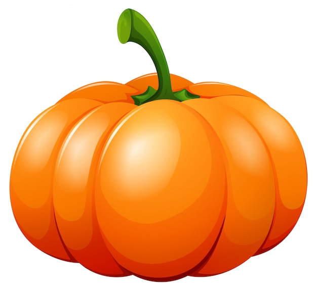 Fresh pumpkin on white b Free Vector