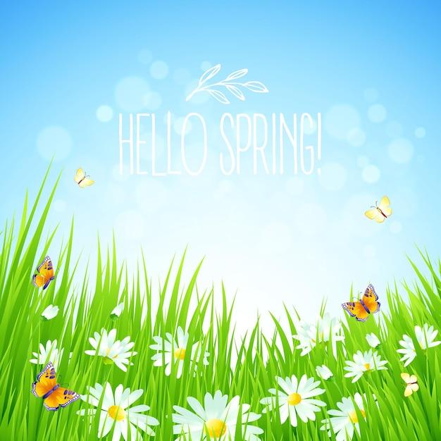 Свежий весенний фон с травой, одуванчиками и ромашками Premium векторы