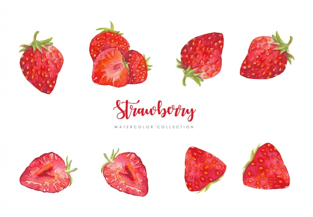 Fresh strawberry collection Premium Vector
