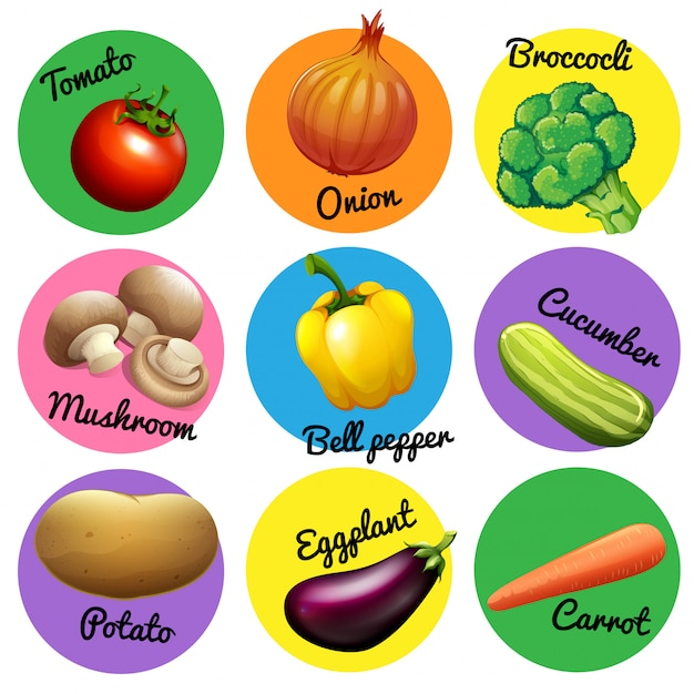 Fresh vegetable in round tags Free Vector