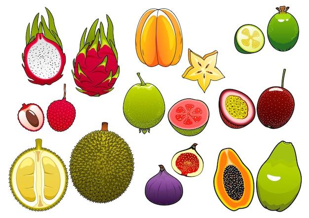 Свежесобранные яркие карамболы и розовые личи, мягкие и спелые плоды маракуйи и фейхоа, инжир и папайя, сочная гуава, драконий фрукт и сладкие плоды дуриана Premium векторы