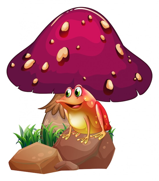 A frog below the giant mushroom Premium Vector