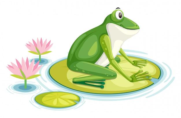 A frog on the lily pad Premium Vector