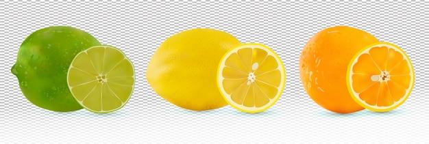 Фрукты цитрусовые апельсин, лимон, лайм. Premium векторы