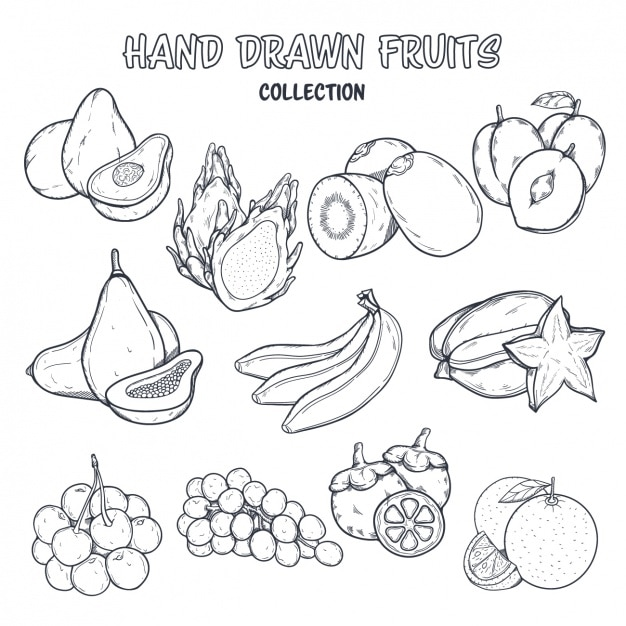 Fruit coloring design Free Vector