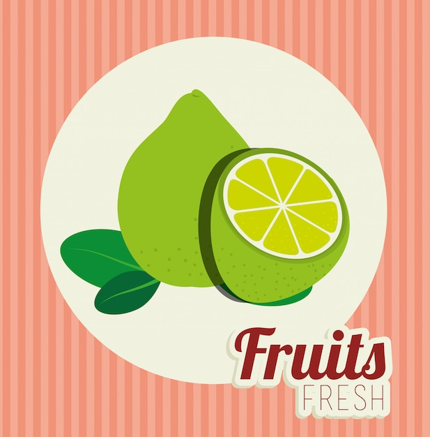 Fruit healthy food illustration Free Vector