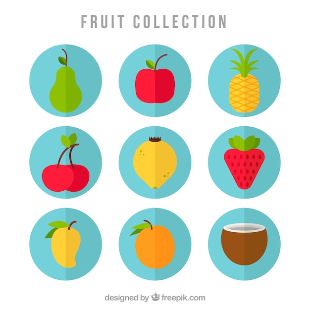 Fruit icon collection Free Vector