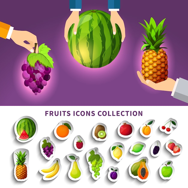 Fruits icons collection Free Vector