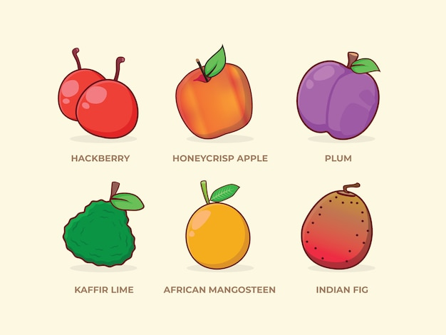 African Mangosteen Images Free Vectors Stock Photos Psd