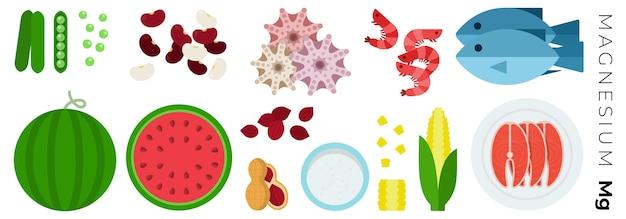 果物野菜、白で隔離される動物性食品 Premiumベクター