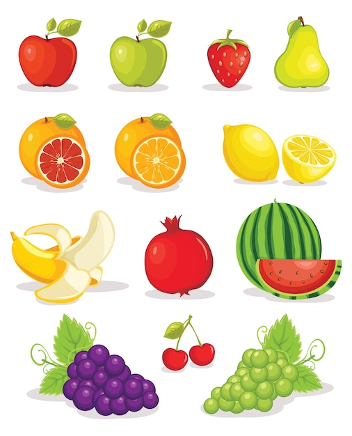 Fruits Premium Vector