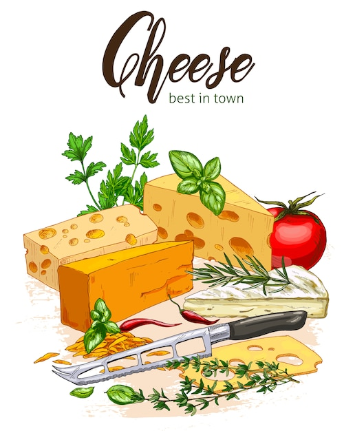 Full color realistic sketch illustration of cheese and herbs with basil and tomatoes Premium Vector