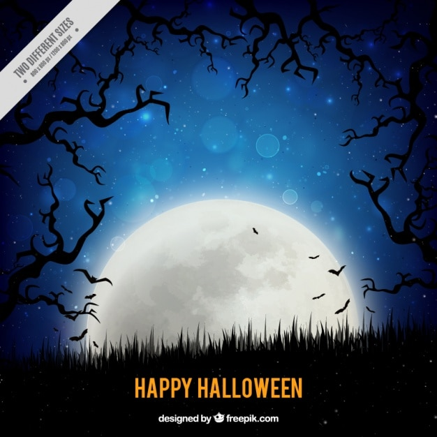 Full moon for a happy halloween Free Vector