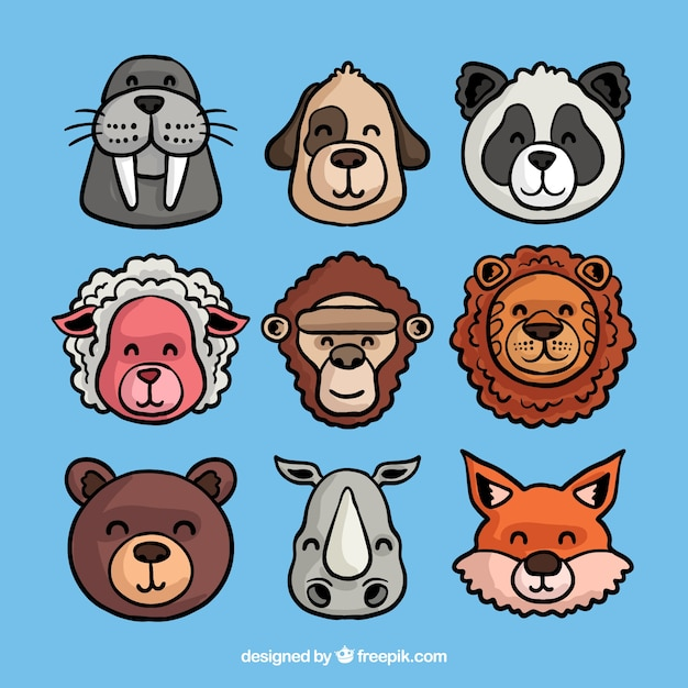 Fun collection of animals faces