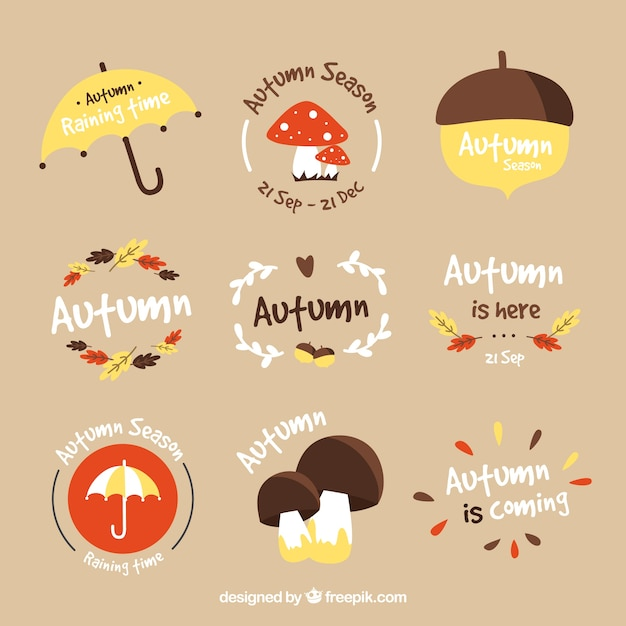 Fun variety of hand drawn autumn labels