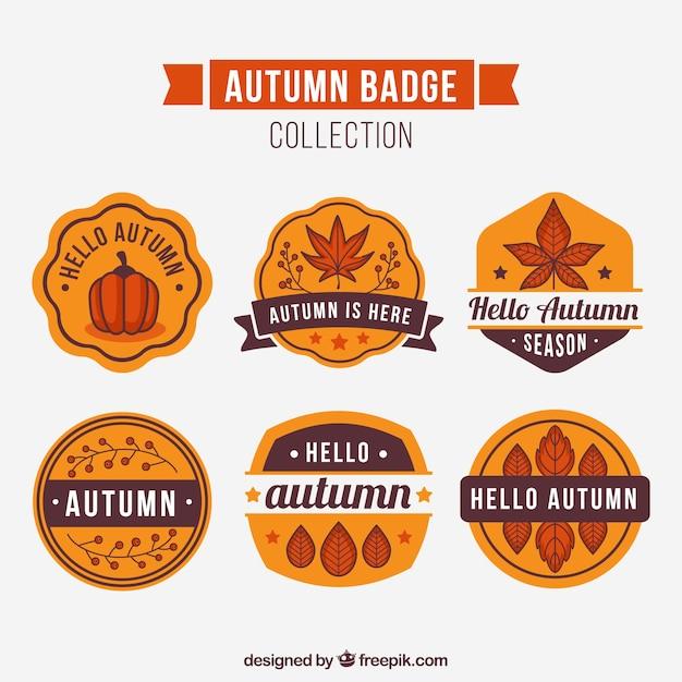 Fun variety of vintage autumn badges