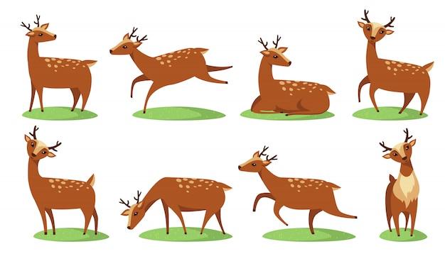 Funny baby deer set Free Vector
