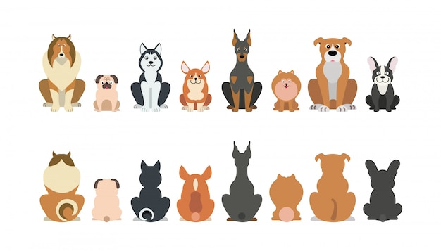Funny cartoon dogs breeds set. Premium Vector
