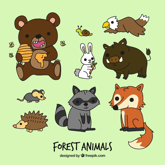 Funny cartoon forest animals Vector | Free Download