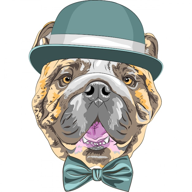Funny cartoon hipster dog english bulldog breed Premium Vector