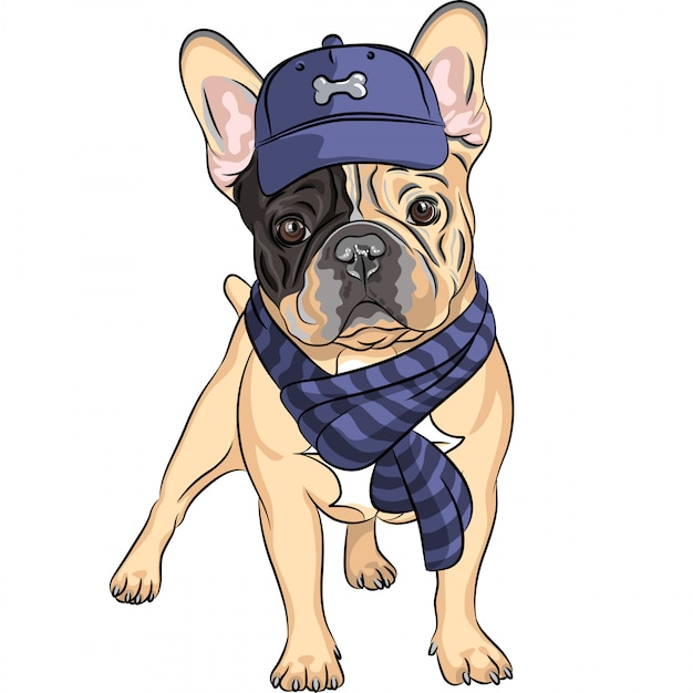 Funny cartoon hipster dog french bulldog breed Premium Vector
