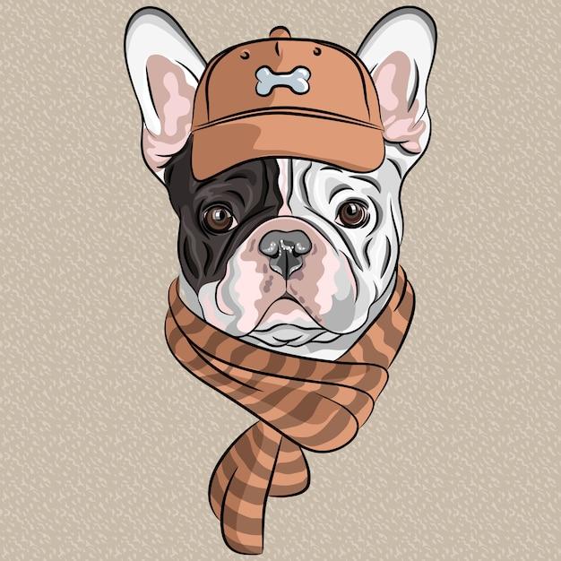 Смешной мультфильм битник собака породы французский бульдог Premium векторы