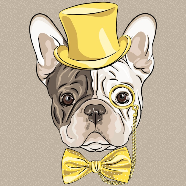 Funny cartoon hipster french bulldog dog Premium Vector
