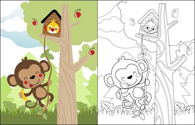 Funny cartoon monkey and bird in the tree Premium Vector