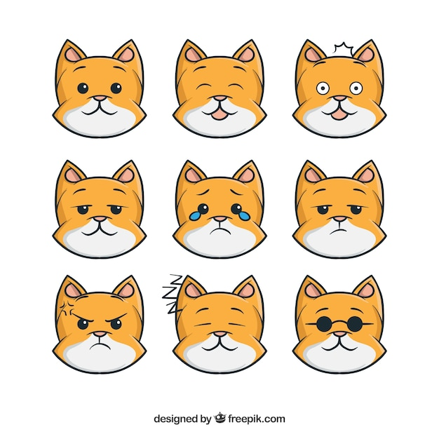 Funny cat sticker collection