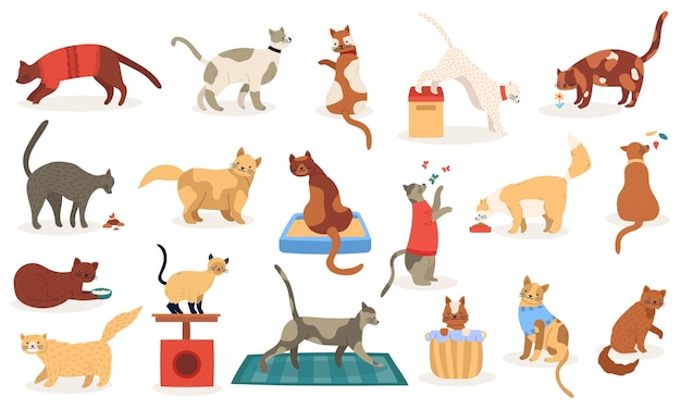 Premium Vector Funny Cats Cute Adorable Kitty Cats Sleeping Playing Pedigree Breeds Pets Domestic Kitten Characters Illustration Icons Set Domestic Pet Cat Pedigree And Breed Character
