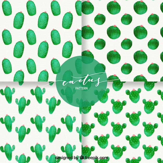 Funny pack of cactus patterns