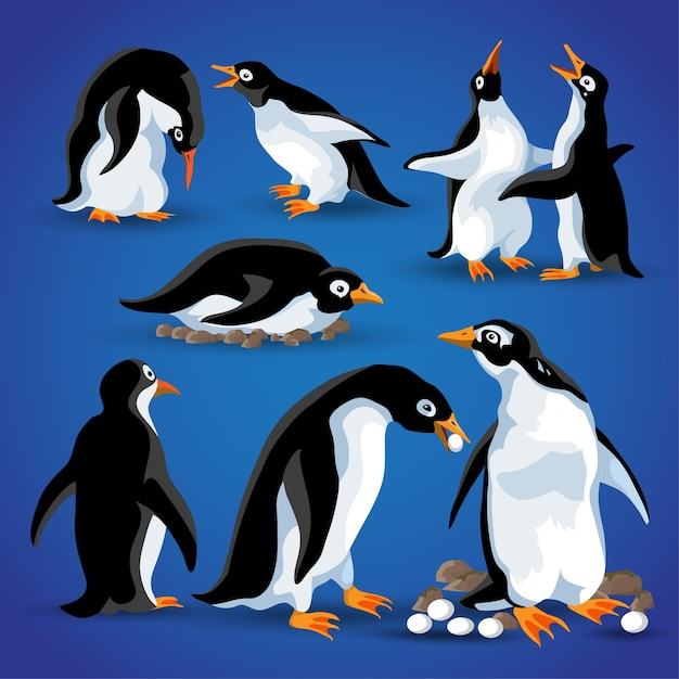 さまざまなアクションポーズの面白いペンギン。漫画のマスコットは、ペンギンの動物の鳥のキャラクターを分離します。 Premiumベクター
