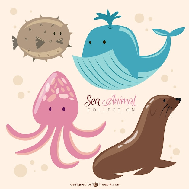 Funny sea animal collection